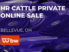 HR Cattle Online Private Feeder Calf Auction