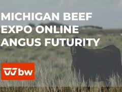 Michigan Beef Expo Online Angus Futurity Sale