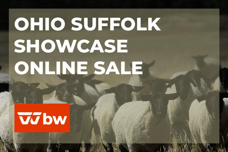 Ohio Suffolk Showcase Online Sale - Ohio