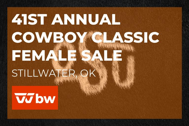 41st Annual Cowboy Classic Online Female Sale - Oklahoma