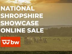 National Shropshire Showcase Online Sale - Ohio