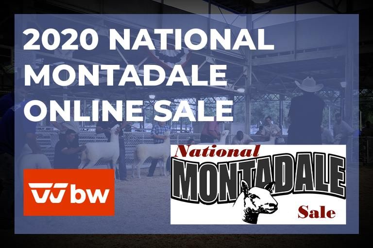 2020 National Montadale Online Sale