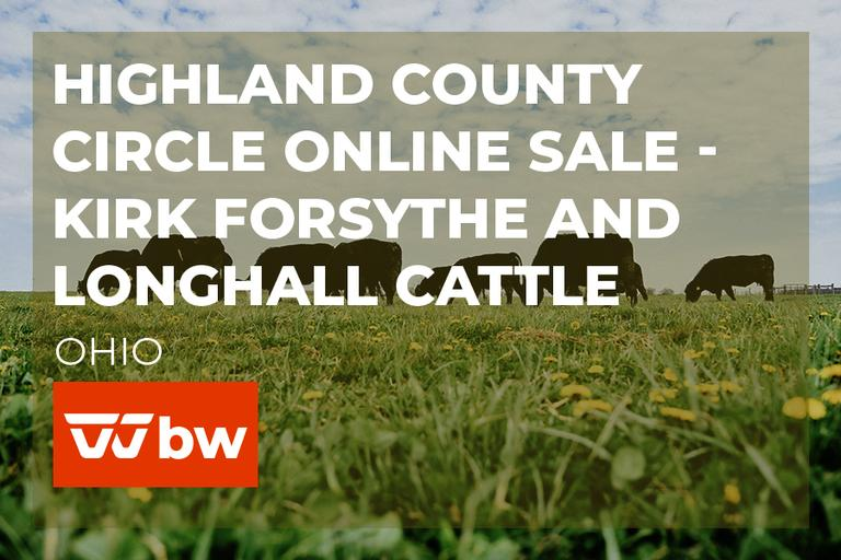 Highland County Circle Online Sale - Kirk Forsythe and LongHall Cattle - Ohio