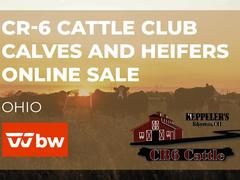 CR-6 Cattle Club Calves and Heifers Online Sale - Ohio