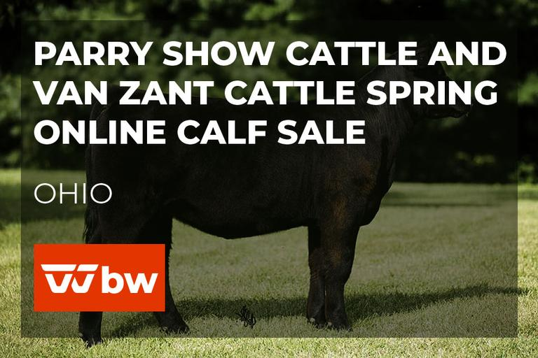 Parry Show Cattle and Van Zant Cattle Spring Online Calf Sale - Ohio