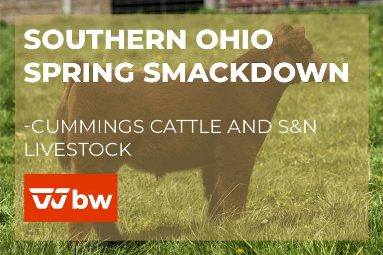 Southern Ohio Spring Smackdown - Cummings Cattle and S&N Livestock - Ohio