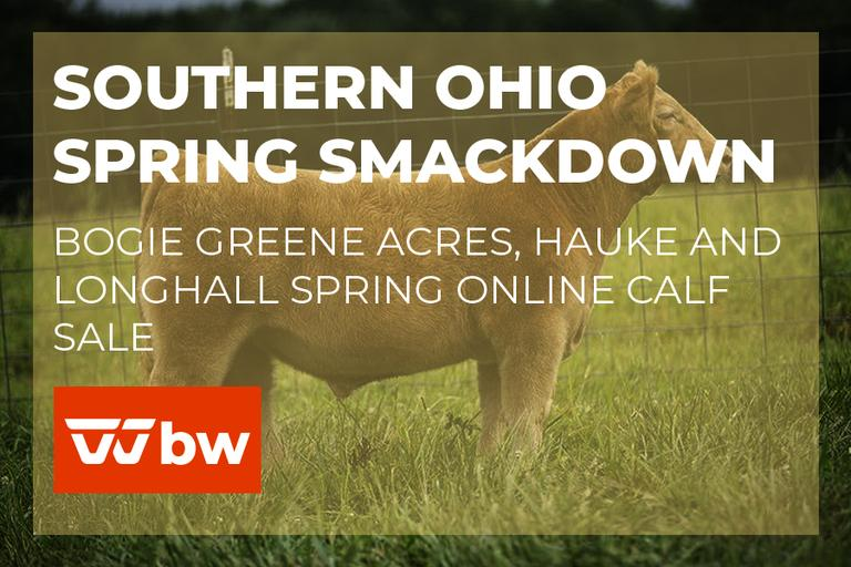 Southern Ohio Spring Smackdown - Bogie Greene Acres, Hauke and LongHall Spring Online Calf Sale - Ohio
