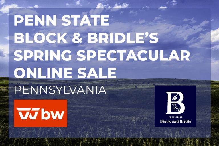 Penn State Block & Bridle`s Spring Spectacular Online Sale - Pennsylvania